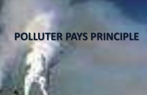 polluter-pays-principle-image-300x194
