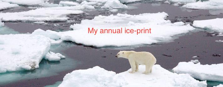 sea_ice_polar_bear
